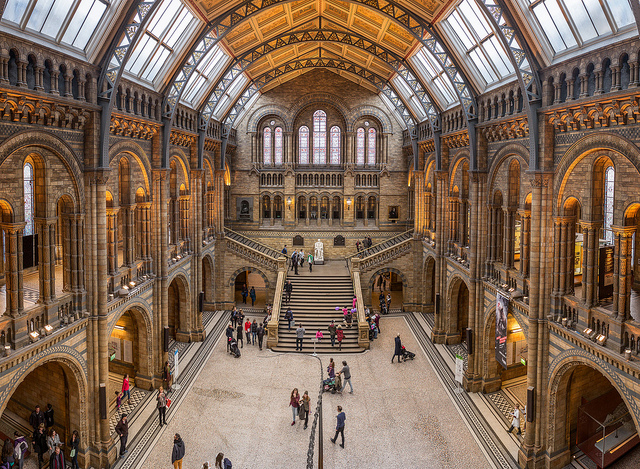 Interior do Natural History Museum. Foto: Creative Commons autor Chris Chabot